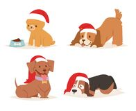 Christmas dog vector cute cartoon puppy characters illustration home pets doggy different Xmas celebrate poses in Santa Stock Image