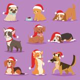 Christmas dog vector cute cartoon puppy characters illustration home pets doggy different Xmas celebrate poses in Santa Royalty Free Stock Photography