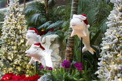 Christmas Dolphins Royalty Free Stock Photo