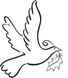 Christmas dove. Simple flying dove holding holly leaf Stock Photo