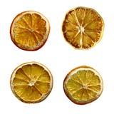 Christmas Dried orange fruit isolated set Stock Images