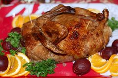 Christmas Duck. Garnished roasted duck on Christmas decorated table Stock Images