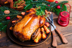 Christmas duck Royalty Free Stock Images