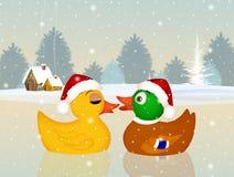 Christmas ducks Stock Photo