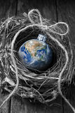 Christmas Earth New Years Sustainable Love. A birds nest with an earth christmas ornament on a wood background Royalty Free Stock Photography