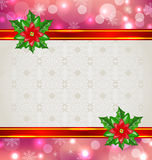 Christmas elegant card with flower poinsettia Royalty Free Stock Images