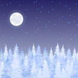 Christmas elegant vector  card Royalty Free Stock Photos