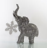 Christmas elephant with snow star. The Christmas elephant wearing a snow star Stock Image
