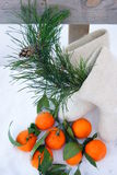 Christmas entourage. Pine branch and felt boots with mandarin flavor in the snow Royalty Free Stock Images