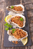 Christmas entree, oyster Stock Images