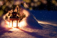 Christmas eve in the woods. Lantern and tree royalty free stock photo