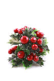 Christmas evergreen Stock Photo