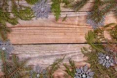 Christmas evergreen branches frame Stock Photos