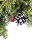 Christmas Evergreen decoration on white Royalty Free Stock Photos