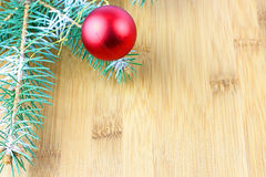 Christmas evergreen spruce tree Stock Image