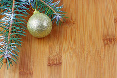 Christmas evergreen spruce tree Royalty Free Stock Image