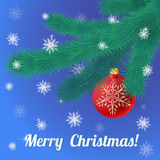 Christmas evergreen spruce tree and red glass ball Stock Photo