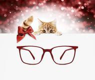 Christmas eyeglasses gift card, ginger cat with red spectacles a stock image