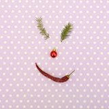 Christmas face made of pine branches,red toy and chili pepper. Minimal christmas concept. Stock Images