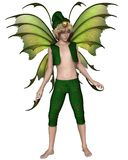 Christmas Fairy Elf Boy Stock Photos