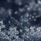Christmas Fairytale. Macro shot from a Snowflake Stock Photos