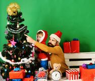 Christmas family decorates fir tree on green background. Winter holiday and decor concept. Boy and men with beard and busy faces put Christmas ball on tree stock photos
