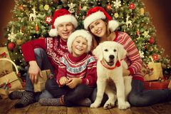 Christmas family with dog, happy father mother child portrait. Under xmas tree royalty free stock photography