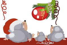 Christmas:family Of The Hedgehogs Royalty Free Stock Images