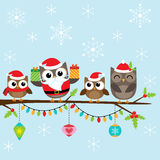 Christmas family of owls. Christmas card with family of cute owls Stock Image