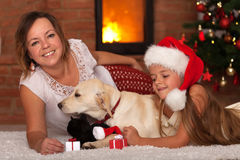 Christmas with the family pets Royalty Free Stock Photo