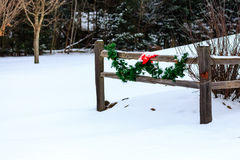 Christmas Fence Royalty Free Stock Photo