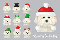 Christmas festive bichon frise dog wearing celebration hats. Christmas festive collection of cute bichon frise puppy dogs wearing celebration new year ornament Stock Image