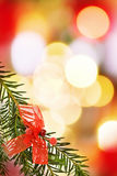 Christmas festive border. With pine tree branch and red ribbons over defocused lights Royalty Free Stock Photography