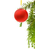 Christmas festive border with red bauble. And traditional pine tree branch. Isolated on white background Stock Photos