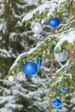 Christmas festive brilliant baubles silver and blue ornaments outdoors on snowy fir branches Stock Photography