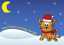 Christmas festive cat on winter snowing background Royalty Free Stock Photography