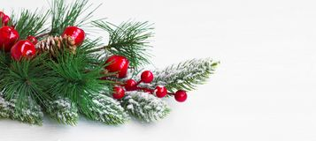 Christmas festive decoration with fir tree branches ,snow and re. D berries  with copy space Stock Photos