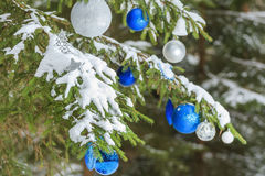 Christmas festive glitter baubles silver and blue ornaments outside on snowy spruce branches Royalty Free Stock Photo