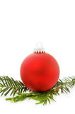 Christmas festive red bauble. Celebrating Christmas with festive red bauble and traditional evergreen tree. Isolated on white background Royalty Free Stock Image