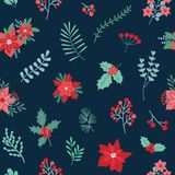 Christmas festive seamless pattern with green and red traditional holiday decorations on dark background - holly berries. And leaves, poinsettia plants. Vector Stock Photo
