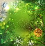 Christmas festive vector background with Christmas tree and snow. Flakes Stock Photography