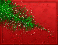 Christmas fir Royalty Free Stock Photo