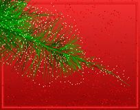 Christmas fir Royalty Free Stock Photography