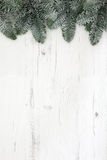 Christmas Fir And Snow Background Royalty Free Stock Images