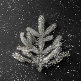 Christmas fir branch on dark black background with snowflakes. Xmas and New Year theme. Flat lay, top view royalty free stock image