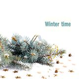 Christmas fir branch with gold streamers and stars Royalty Free Stock Photo