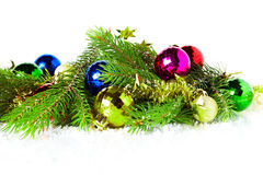 Christmas fir branches  on white background Royalty Free Stock Photography