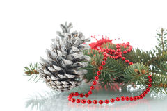 Christmas fir-cone with fir branches Royalty Free Stock Image