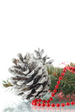 Christmas fir-cone with fir branches Stock Images