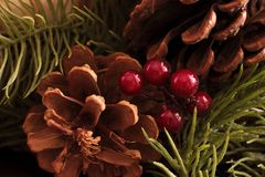 Christmas fir cones and berries. Selective focus stock photography